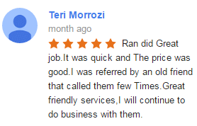 Google My Business Review - Terry Morrozi