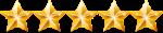 5 Stars Rating Article - Elite Tech Services LLC